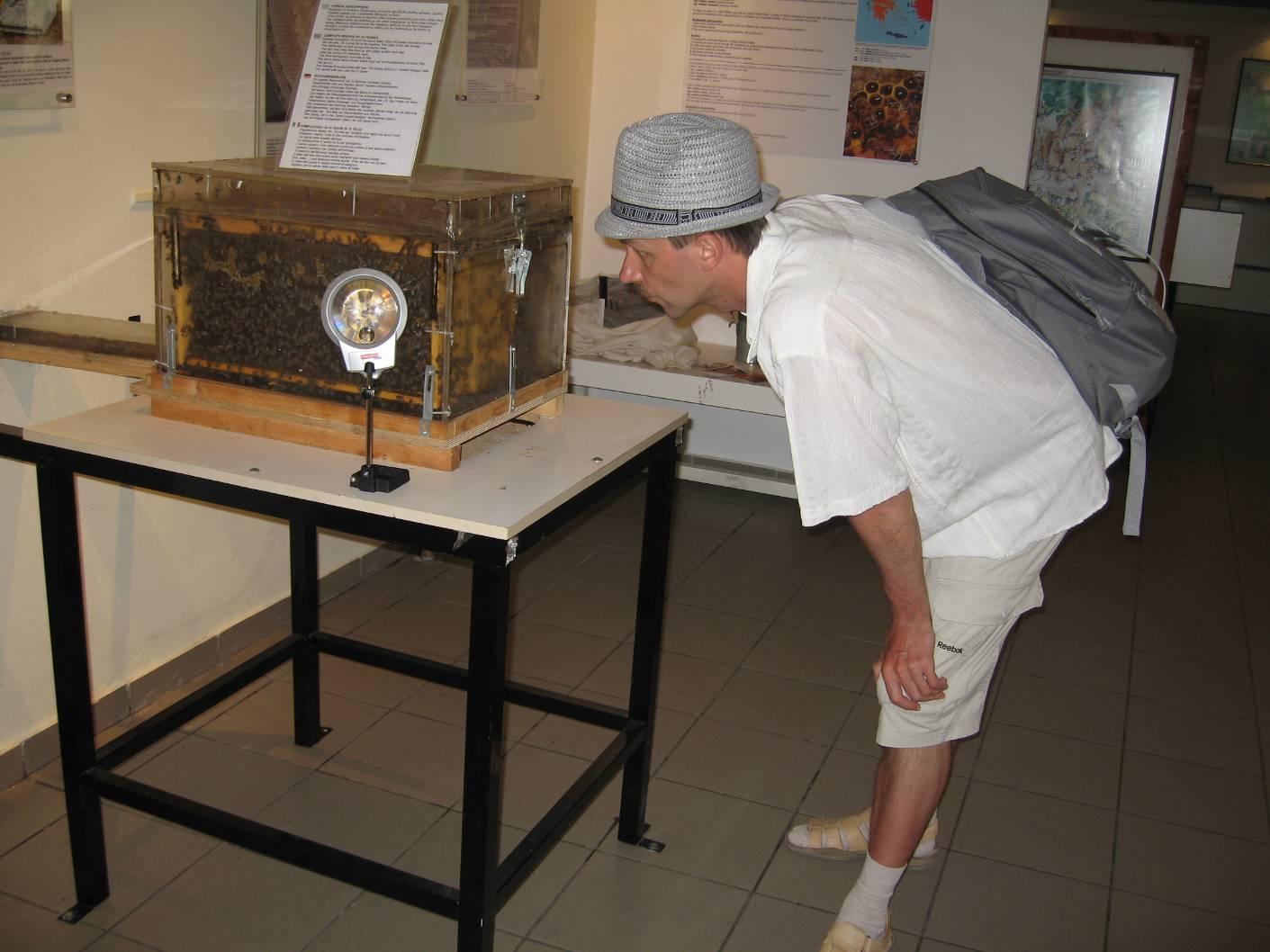 Родос музей пчел
